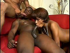 Black Bi Me