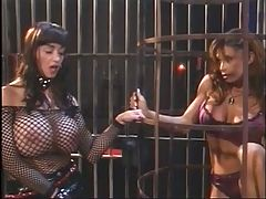 Big Tits Hottie In Fishnets Enjoying With Her Big Tits Slave